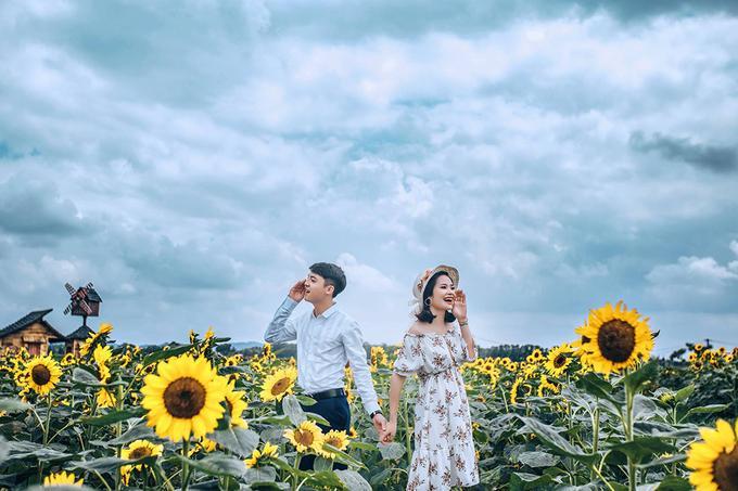 Bạn nên đi sớm để có được hình đẹp. Thời điểm lý tưởng từ 7h đến 11h sáng. Cánh đồng hoa cũng thu hút nhiều cặp đôi đến chụp ảnh cưới. Ảnh: Mạnh Thuỳ.