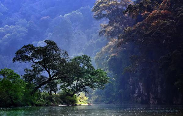 Rất đỗi thơ tình - Ảnh: phanthoailinh | Photography Follow