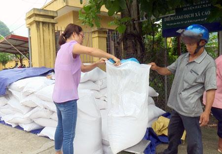 Người dân xã Cao Tân nhận gạp cứu đói giáp hạt tại UBND xã