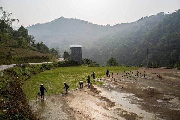 Người nông dân làm ruộng bên con đường đến Lạng Sơn. Ảnh: Mathieu Arnaudet - 500px.com.