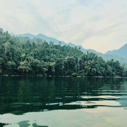 Màu xanh của rừng hòa cùng sắc xanh của nước làm xốn xang không biết bao du khách. ( Nguồn: nhinguyentranthao).