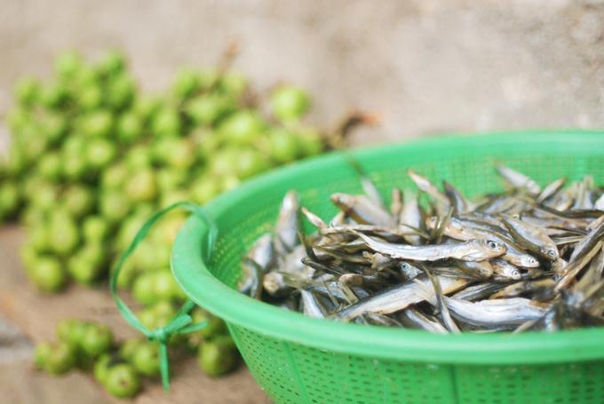 Bạn có thể mua những xiên cá và sung làm quà về cho bạn bè hoặc ăn tại chỗ. Mỗi xiên cá có giá khoảng 10.000 đồng. Cá hồ Ba Bể nhỏ chỉ bằng hai đốt ngón tay, khi nướng lên có màu vàng sẫm, thịt dai và ngon.