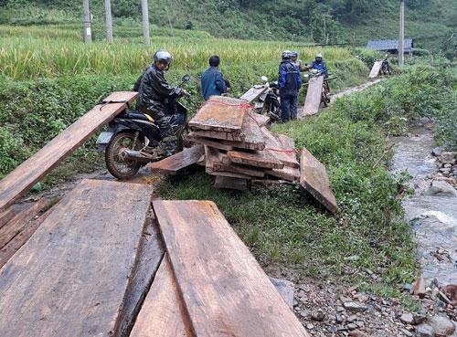 Vận chuyển gỗ tang vật về trụ sở Hạt Kiểm lâm huyện.