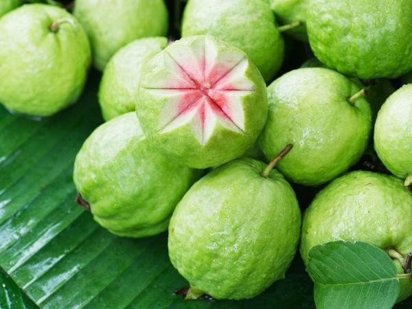 Ổi là loại quả chứa nhiều dưỡng chất cần thiết cho sức khỏe - Ảnh: Internet