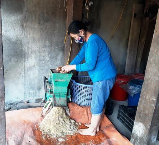 Công đoạn nghiền các loại cây rừng để làm men tại HTX nấu rượu Thanh Tâm.