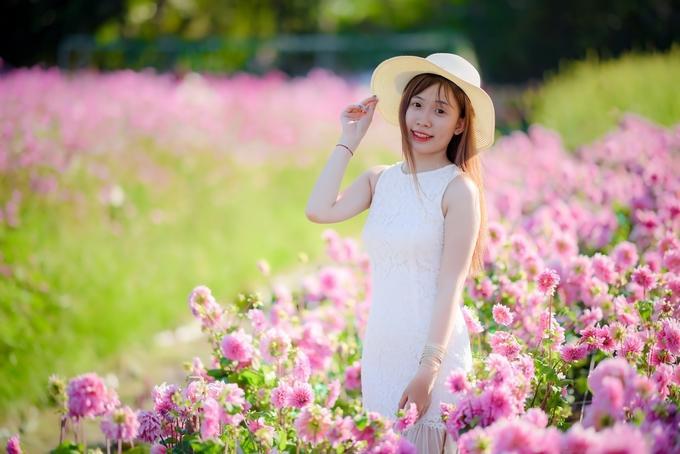 Ở đây bạn có thể bước vào giữa vườn chụp ảnh cùng hoa dưới sự cho phép của chủ vườn. Tuy nhiên nên cẩn thận tránh làm hư hại - Ảnh: Đoàn Nhựt Thanh