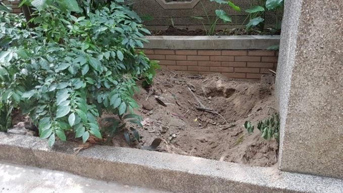 Nơi cảnh sát tiến hành đào bới.