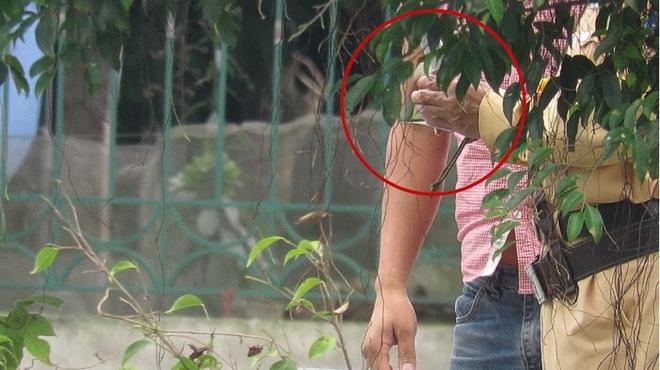 Ảnh cắt từ clip: Đời sống Plus/Gia đình Việt Nam