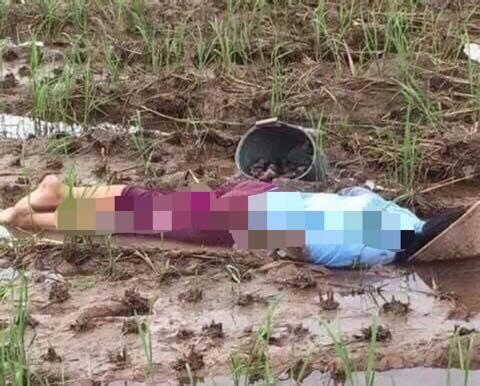 Chị H. tử vong trong tư thế nằm sấp, úp mặt xuống giữa cánh đồng vắng, bên cạnh là xô ốc đang bắt dở