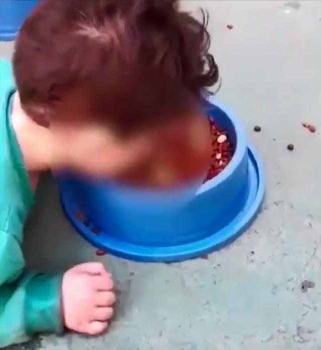 Cậu bé bị mẹ ép ăn thức ăn của chó.