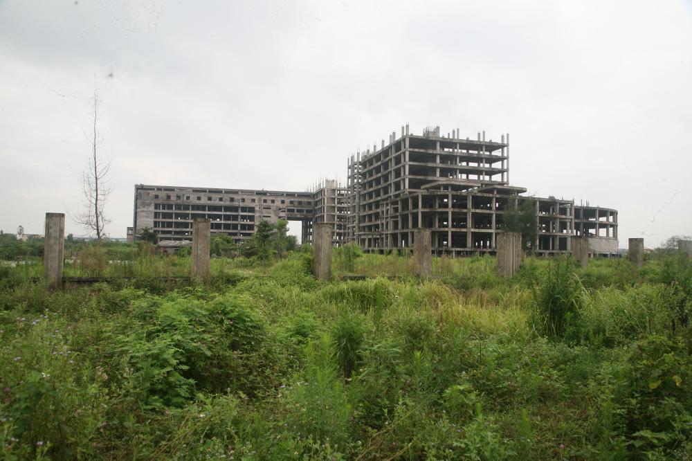 Dù chậm tiến độ 7 năm nhưng hiện bệnh viện vẫn bị bỏ hoang và làm nơi chăn thả xúc vật.