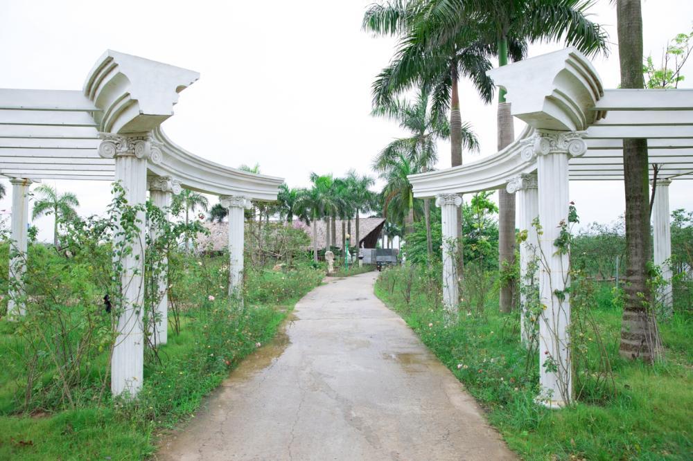 Công viên hoa hồng lớn nhất Hà Nội chuẩn bị khai trương.