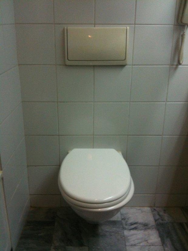 Duy trì một tư thế quá lâu trong không gian chật hẹp trong nhà vệ sinh sẽ gây cản trở lưu thông máu và thiếu hụt oxy lên não. Ảnh: Blog