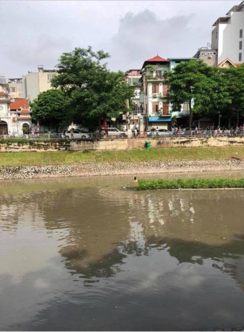 Cô gái bơi lội giữa sông (Ảnh TTT)