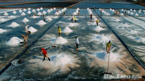 Cánh đồng muối ở Bạc Liêu. (Nguồn: Bạc Liêu Online)