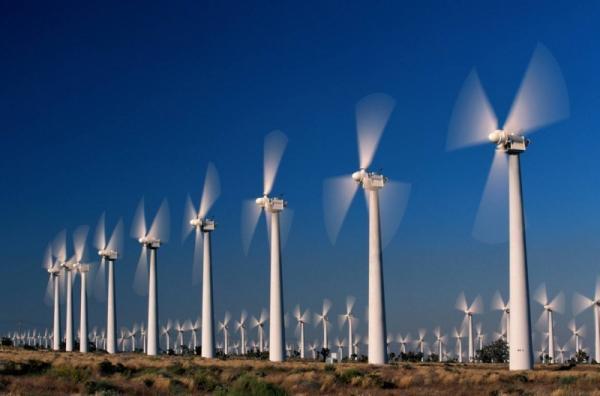 Cận cảnh những chiếc quạt gió khổng lồ ở Bạc Liêu. (Nguồn: toplist.vn)