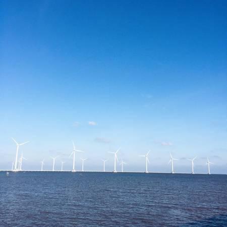 Cánh đồng quạt gió ở Bạc Liêu. (Nguồn: Long Nguyễn)