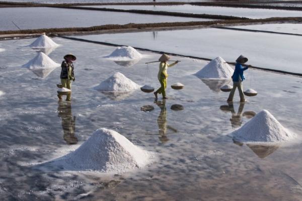 Bạc Liêu có hai huyện làm muối đó là huyện Hòa Bình và Đông Hải. (Nguồn: saigonphoto.net)