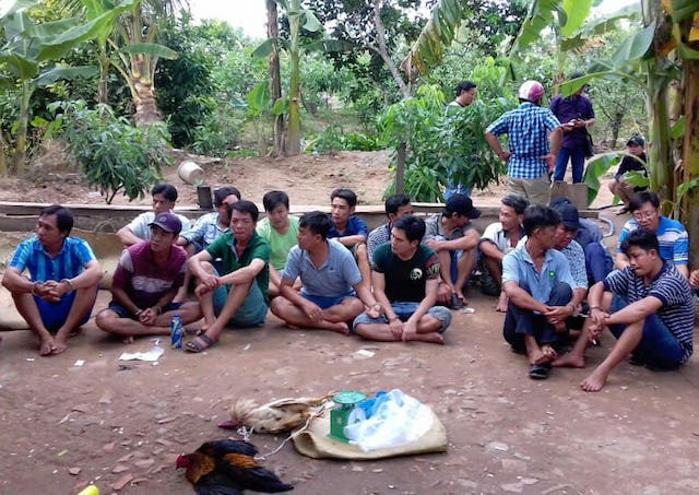 Trường gà được cảnh sát triệt phá tại huyện Chợ Gạo (Tiền Giang). Ảnh: Công an cung cấp.