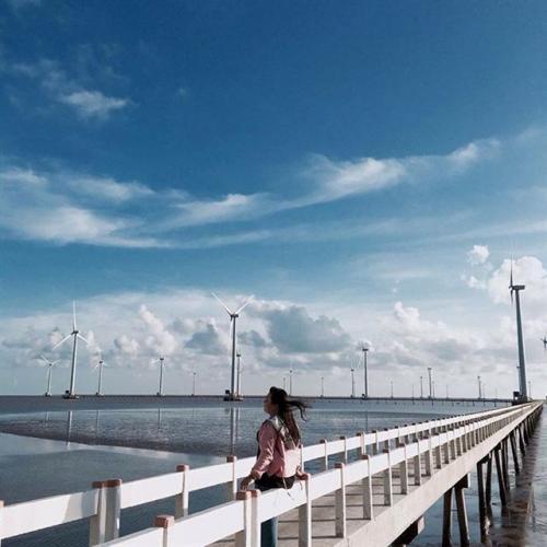Cận cảnh những chiếc quạt gió khổng lồ ở Bạc Liêu. (Nguồn: klynhuynh)