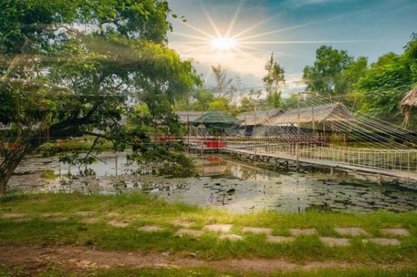 Vườn chim Bạc Liêu. (Nguồn: Minh Phung Chu)