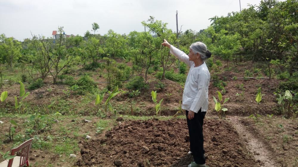 Bà mẹ Việt Nam Anh hùng Phạm Thị Liên 10 năm đội đơn xin cấp sổ đỏ bất thành.