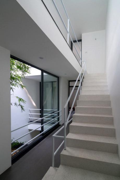 Cầu thang và hành lang ở vị trí trung tâm kết nối các không gian.