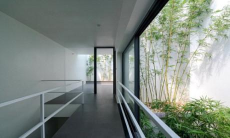 Các không gian trong nhà được tiếp cận với ánh sáng và cây xanh nên vô cùng thoáng đãng.