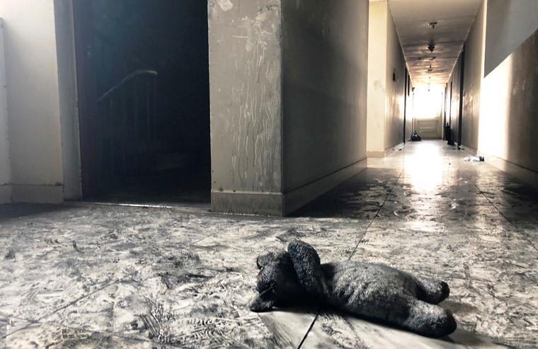 Trên đường cùng người thân tháo chạy khỉ đám cháy, bé gái khoảng 3 tuổi ngụ tại tầng 5 đã gục ngã vì ngạt ngay trên hành lang gần thang máy block A chung cư Carina Plaza. Khi lực lượng cứu hộ tìm thấy thì bé đã mất, bên cạnh là chú gấu bông khiến ai chứng kiến cũng nhói lòng.