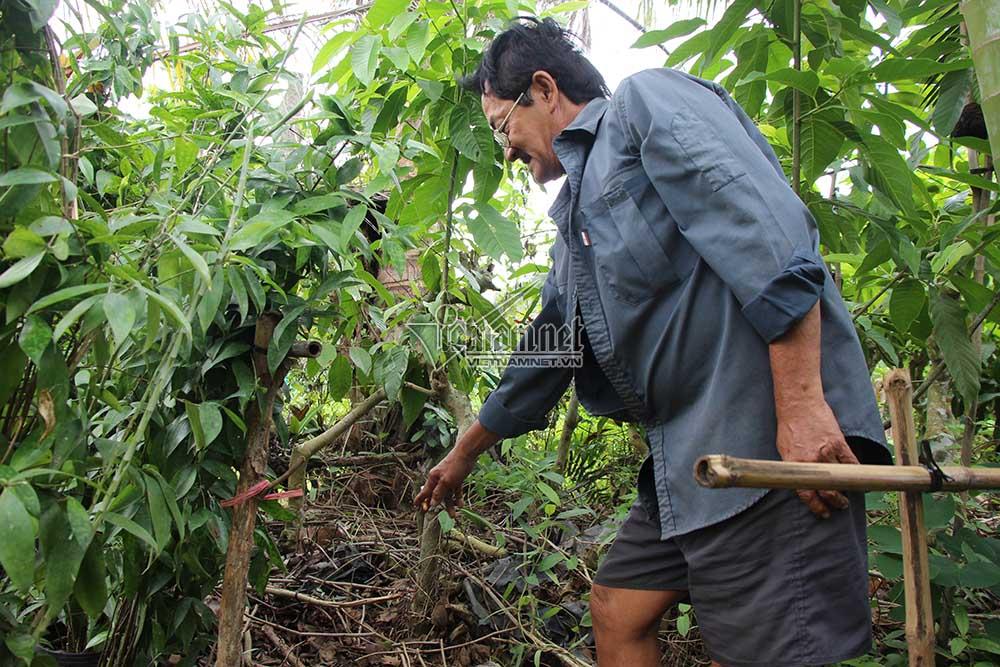 Phần đầu của nạn nhân bị Tâm vứt sang vườn của ôngNguyễn Ngọc Minh - tổ trưởng khóm 3