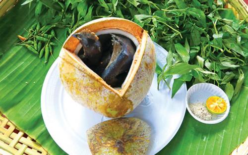 Gà ác tiềm ớt hiểm trái dừa: Món ngon đặc trưng xứ dừa Bến Tre