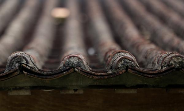 Phần mái được lợp ngói âm dương đặc trưng.