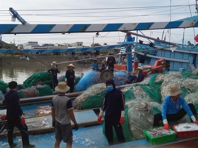 Cần đẩy mạnh kiểm soát các tàu cá và an toàn thực phẩm, truy xuất nguồn gốc đối với sản phẩm thủy sản để tháo gỡ thẻ vàng của EC
