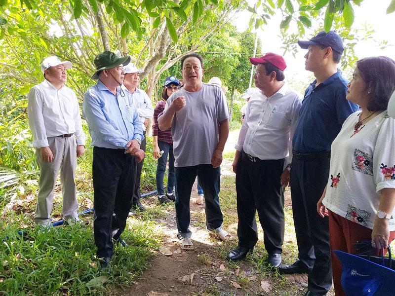 Phó bí thư Tỉnh ủy Trần Ngọc Tam (bìa trái) và đoàn chuyên gia đến tham quan, kh