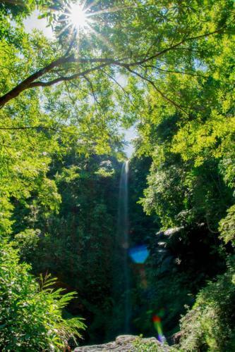 Khung cảnh nên thơ, xanh xanh tràn đầy sức sống ở thác Khe Lạnh. (Nguồn: Thuy Hong Le)