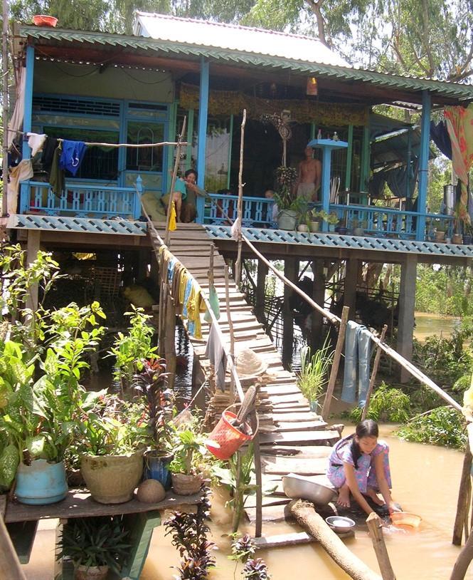 Nhà sàn thích hợp sống ở vùng ngập lũ An Giang, Đồng Tháp.  Ảnh Zing.vn.