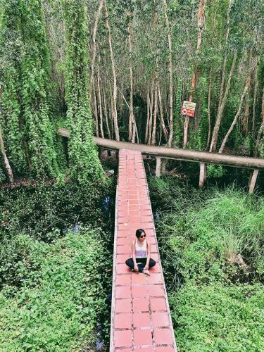 Con đường bê tông xuyên rừng là điểm nhấn của khu du lịch. (Nguồn: Fb Nguyễn Thị Vân Anh)