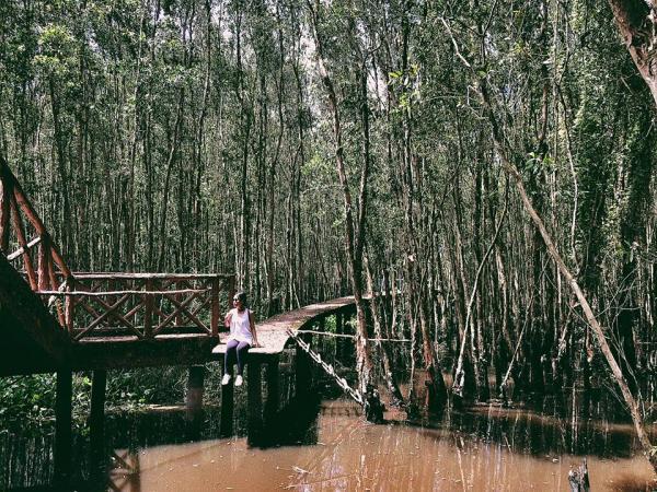 Con đường nhỏ lấp ló giữa rừng tràm. (Nguồn: Fb Nguyễn Thị Phương Anh)