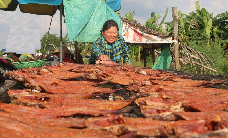 Khô cá lóc được nhiều du khách chọn mua trên quốc lộ 91B, đoạn thuộc phường Thới An Đông, quận Bình Thủy. Ảnh: ĐĂNG HUỲNH