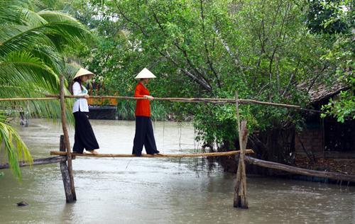 Nguồn: langmanmientay.com