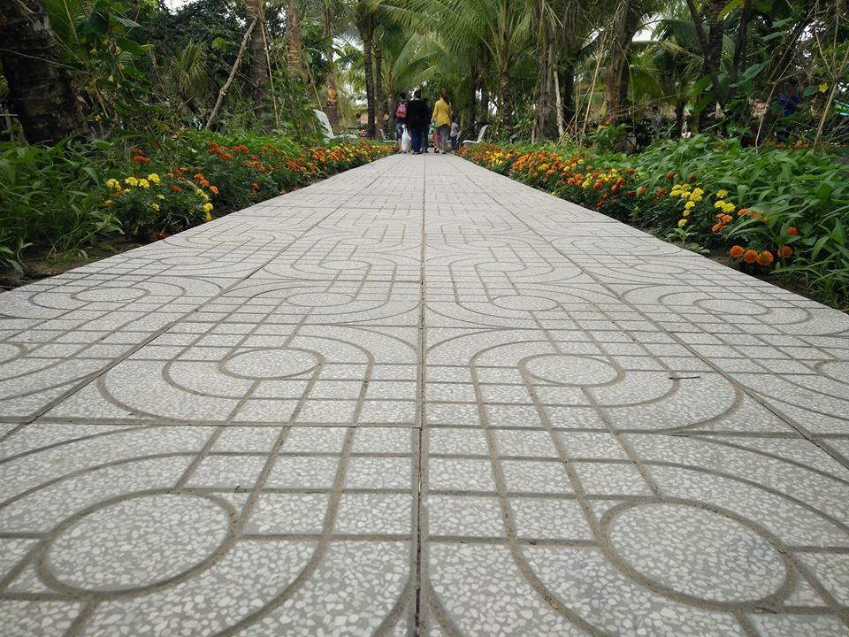 Con đường nhựa dẫn lối vào Làng du lịch sinh thái Ông Đề.