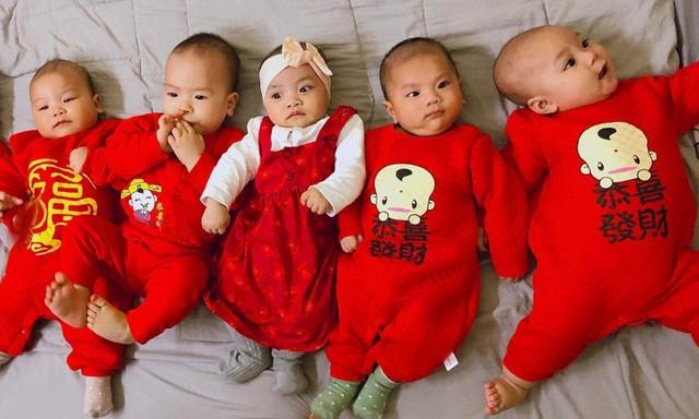 5 em bé sinh năm 2019 của gia đình bà Lựu. Ảnh: Lily Võ.