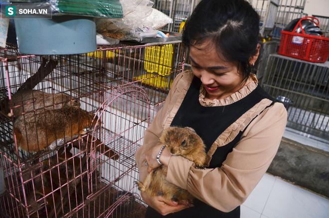 Tâm nguyện của Như có thể chăm sóc cho các thú cưng bị bỏ rơi đến khi cạn sức mới thôi