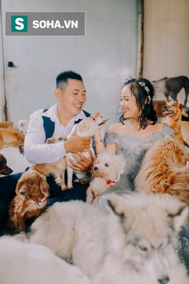 Vợ chồng Như đã nhiều lần hoãn cưới để lấy tiền chữa trị cho những chú chó mèo mắc bệnh