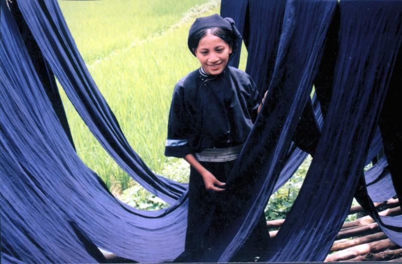 Phụ nữ Nùng An, xã Phúc Sen (Quảng Uyên) phơi vải chàm. Ảnh: Chu Đức Hòa