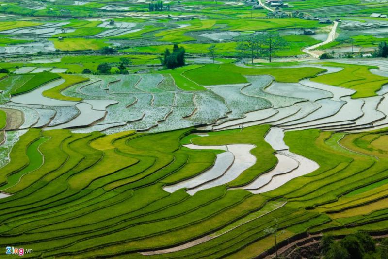 Yên Bái là một trong những nơi có ruộng bậc thang đẹp nhất, tập trung ở Tú Lệ, Cao Phạ, Mù Cang Chải.