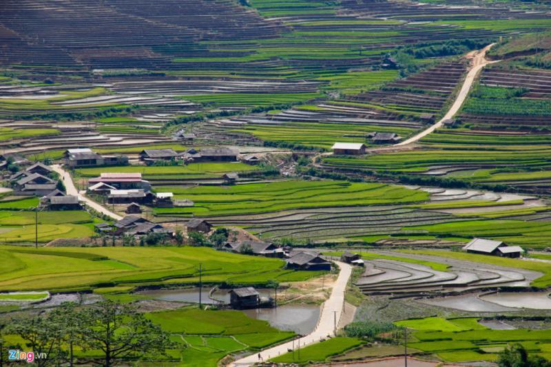 Con đường vào bản Lìm Mông uốn lượn tuyệt đẹp qua những nấc thang xanh mướt.