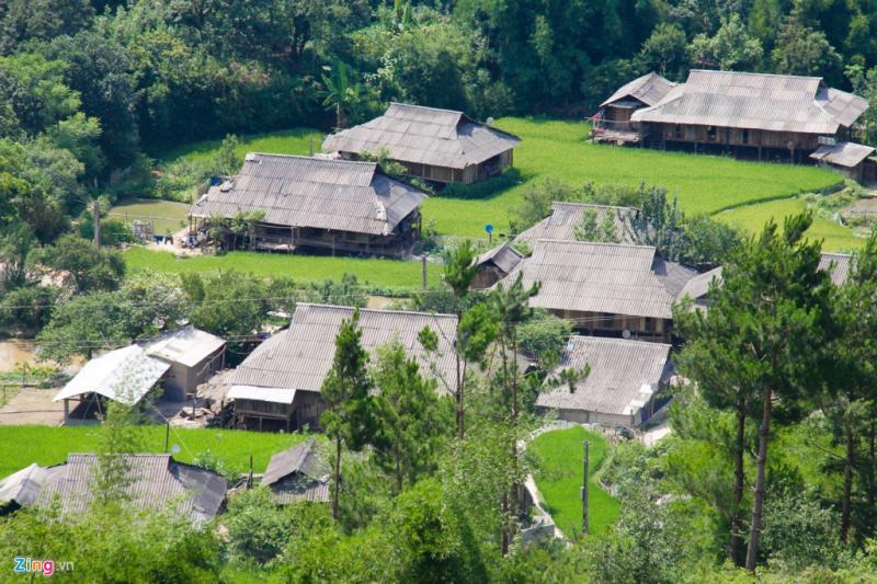 Những ngôi nhà nhỏ xinh nằm chen trong ruộng lúa