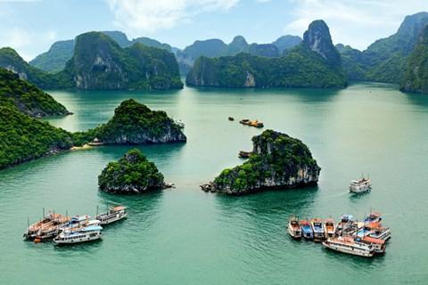 Du lịch tàu trên vịnh Hạ Long đang trở thành một thế mạnh của tỉnh Quảng Ninh