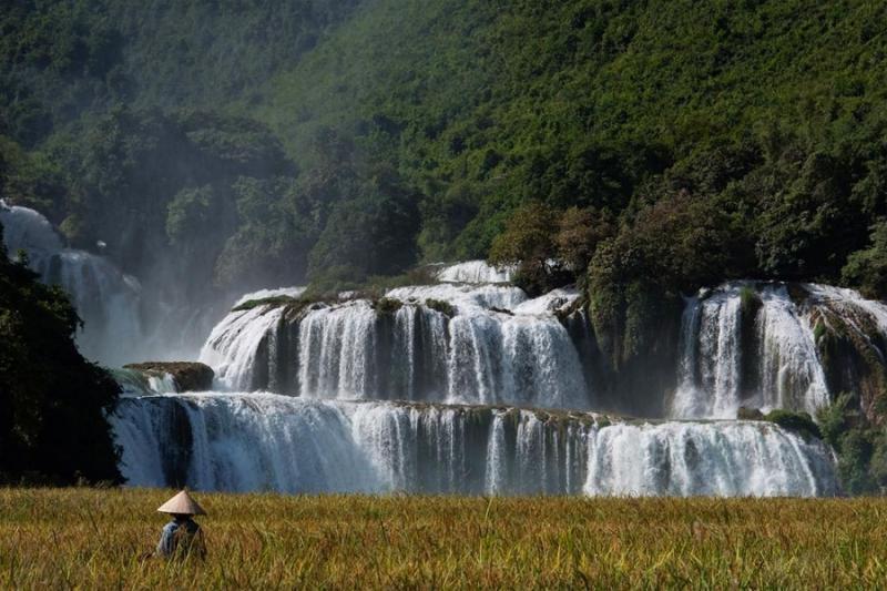 Mùa khô là thời điểm thích hợp nhất để tới tham quan thác Bản Giốc, lúc này thác nước bình yên, trong vắt kết hợp với mùa lúa chín vàng dưới chân thác tạo khung cảnh đẹp đến nao lòng. (Ảnh: @timkemper)